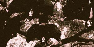 Guadalupe Plata nuevo disco y gira 2013