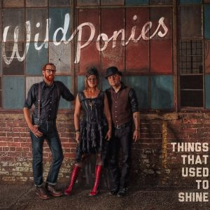 "Wild Ponies ""Things That Used to Shine"", nuevo disco"