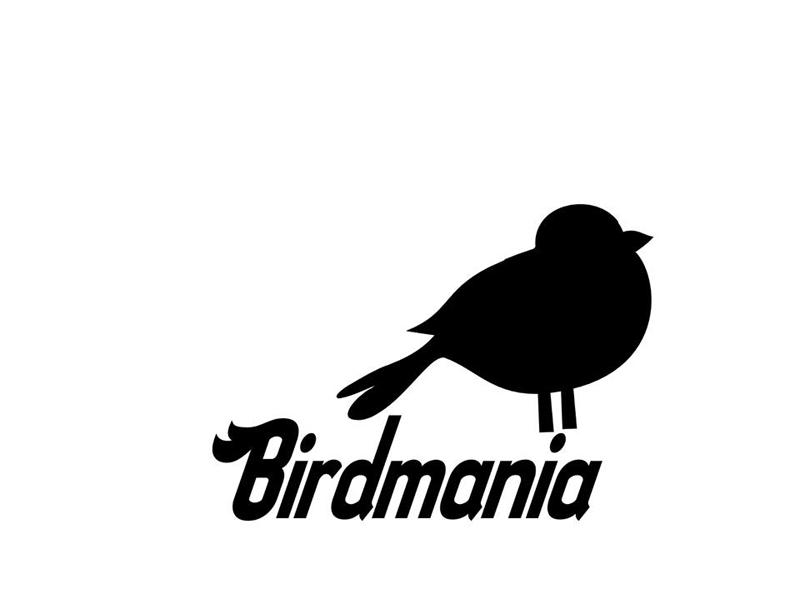 Entrevista a Birdmania formación de rock tinerfeña
