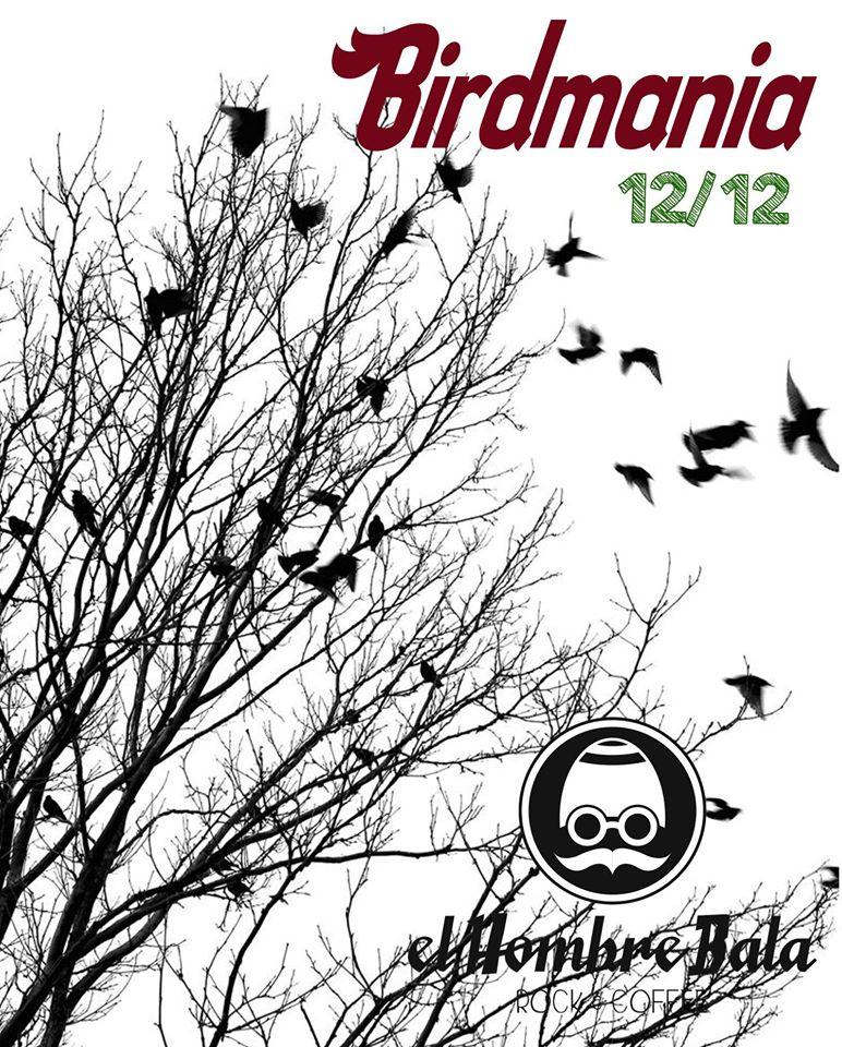 Entrevista a Birdmania