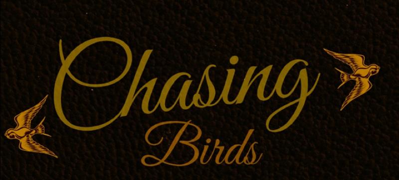 Chasing Birds01.jpg
