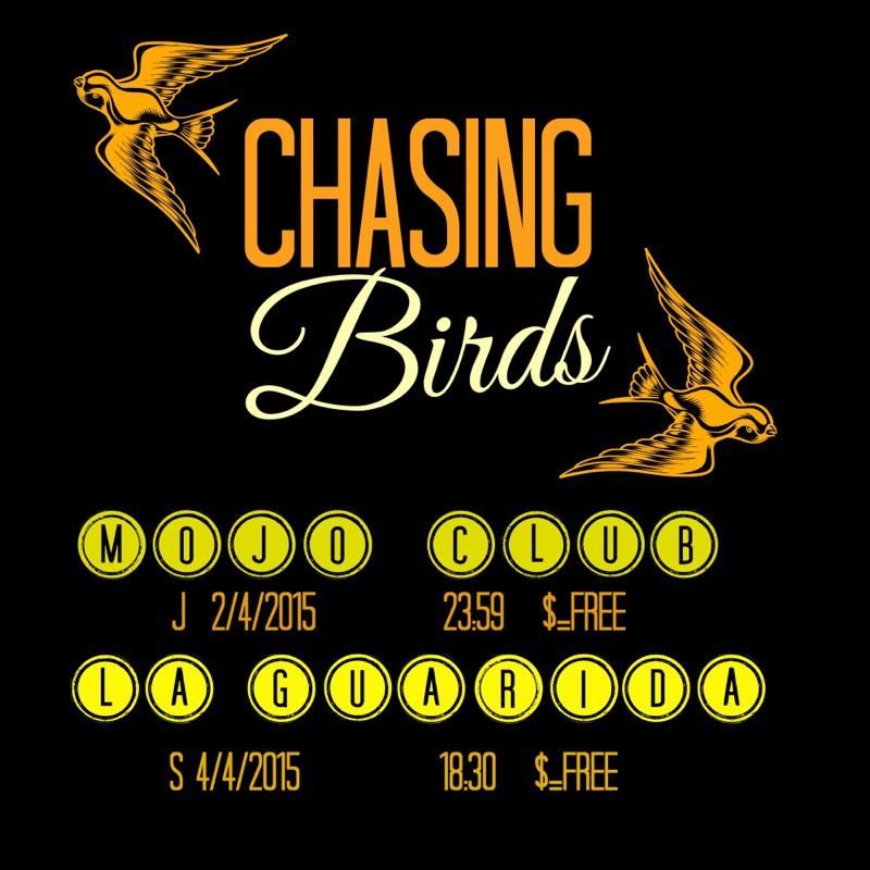 Chasing Birds04.jpg