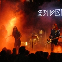 Spiders Madrid oct 2015