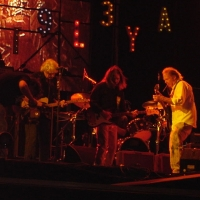 Neil Young Madrid.4