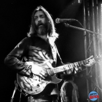 Chris Robinson Brotherhood crónica Madrid 2016.3