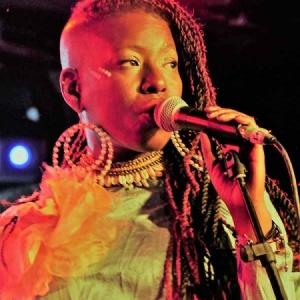 Shirley Davis & The SilverBacks Wishes & wants nuevo disco.13