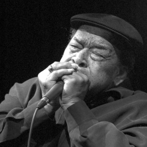 jamescotton