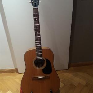 Lutieres del blues-rock Miguel Ángel Luthier Hofner 490