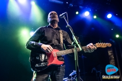 Wilko Johnson Barcelona 2019.7