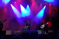 Azkena-Rock-Festival-2019-crónica-The-Hillbilly-Moon-Explosion