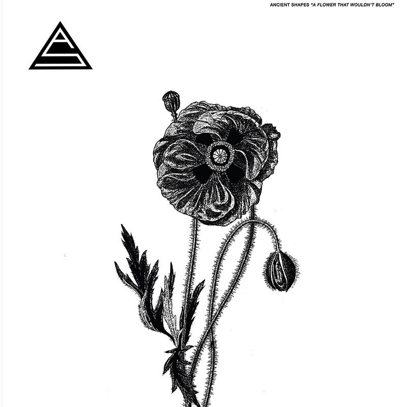 Ancient-Shapes-el-otro-proyecto-de-Daniel-Romano-publica-nuevo-disco-A-Flower-That-Wouldn't-Bloom-2019