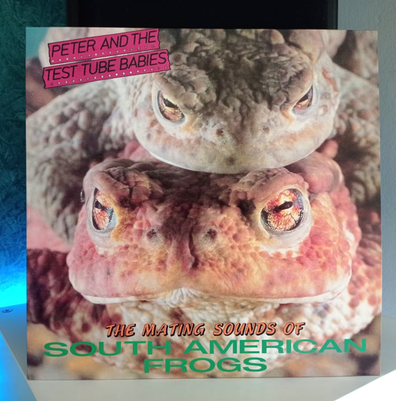 Peter And The Test Tube Babies The Mating Sounds Of South American Frogs disco